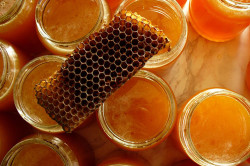 Пчелиный прополис