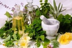 Травы для нормализации аденомы