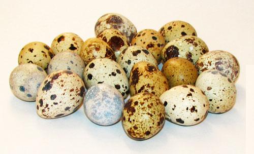 В какое время суток лкчше употреблять перепелиные яйца