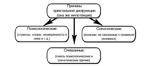 Схема причин эректильной дисфункции