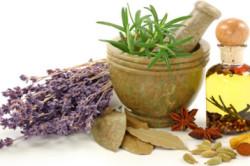 Лечение лекарственными растениями