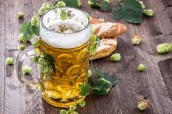 Как влияет пиво на зачатие плода, на мужские половые клетки