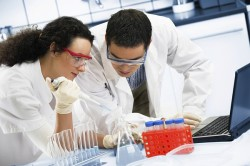 Увеличение потенции при употреблении витамина Е при исследовании на практике