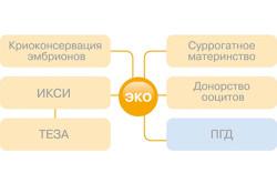 ЭКО и другие методы вспомогательной репродукции