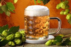 Пиво запрещено при подагре