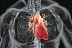 Поражение сердечно-сосудистой системы