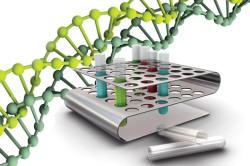 ДНК-диагностика