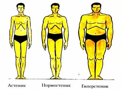 Типы сложения тела у мужчин