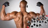 Что влияет возьми выработку тестостерона у мужчин?