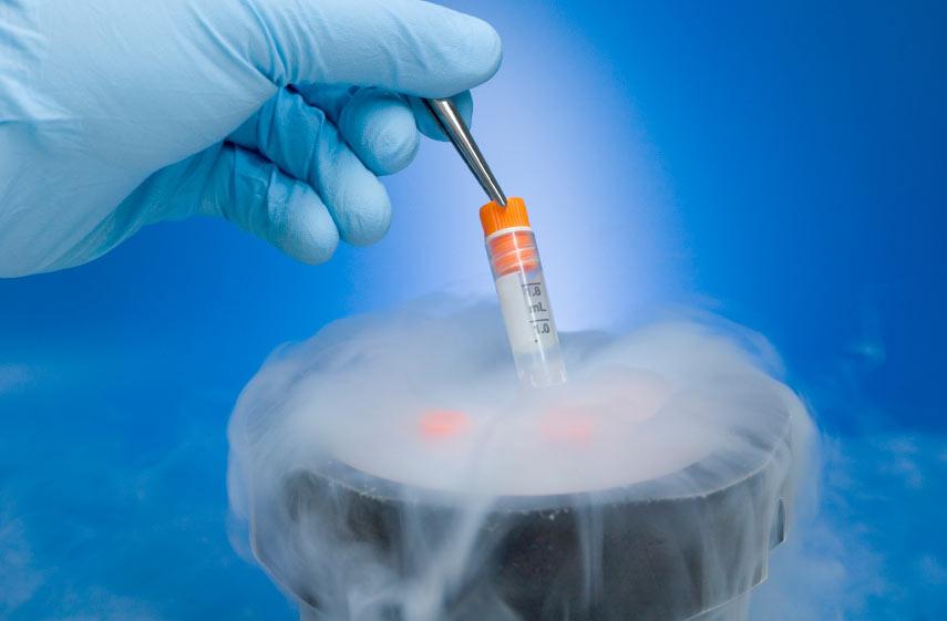 Пробирка с замороженной спермой
