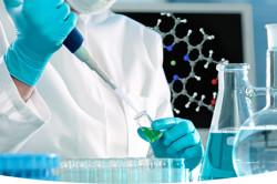 Лабораторные исследования эпителий