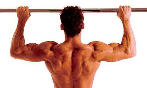 Дигидротестостерон оказывает большое влияние на мускулатуру мужчины