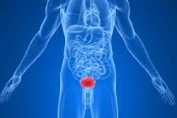 Воспалительный процесс стенок мочевого пузыря