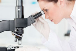 Наличие лейкоцитов в сперме