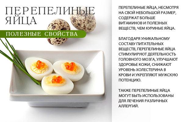 Полезные свойства перепелиных яиц