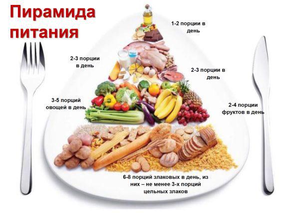 Рисунок 3. Пирамида питания