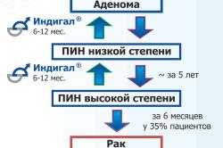 Схема развития ПИН