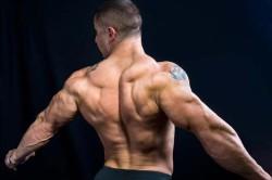 Широчайшие мышцы спины