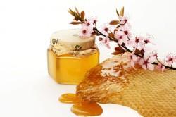 Лечение кольпита медом