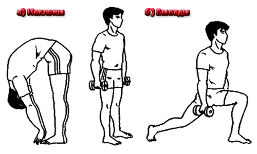 Упражнения для улучшения потенции