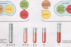 Схема реакции Вассермана