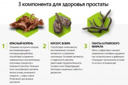 Состав Простодина