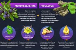 Состав Уретрамола