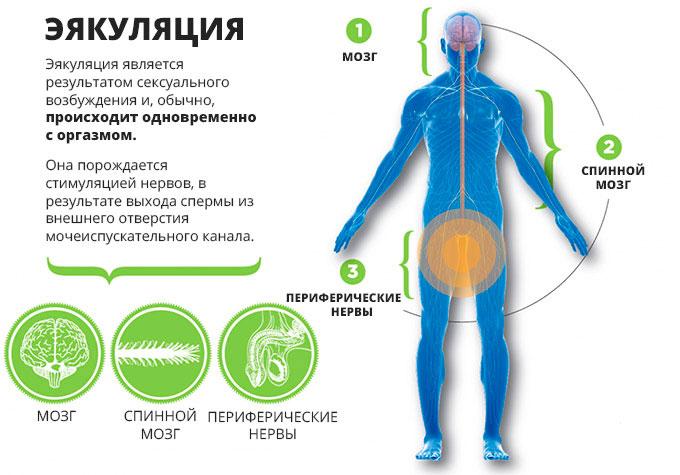 rizhaya-devushka-s-puhlimi-nogami-hochet-seksa