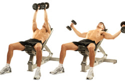 Упражнения с гантелями для грудных мышц