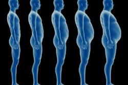 Набор веса за счет жировых отложений