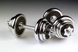 Выбор веса гантелей