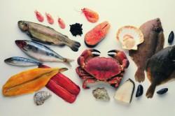 Употребление морепродуктов
