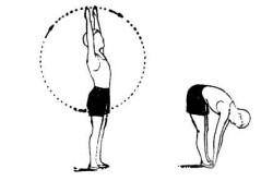 Рисунок 5. Наклоны вперед и в стороны