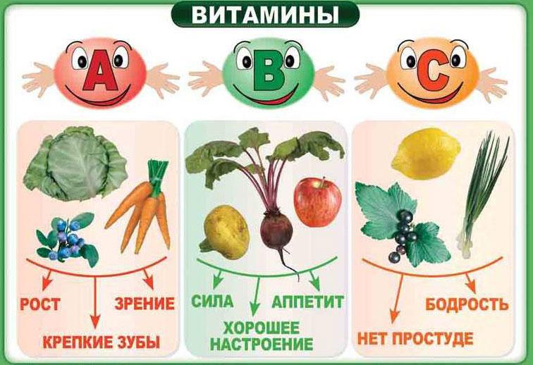 Витамины А, В и С