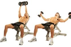 Грудные упражнения с гантелями