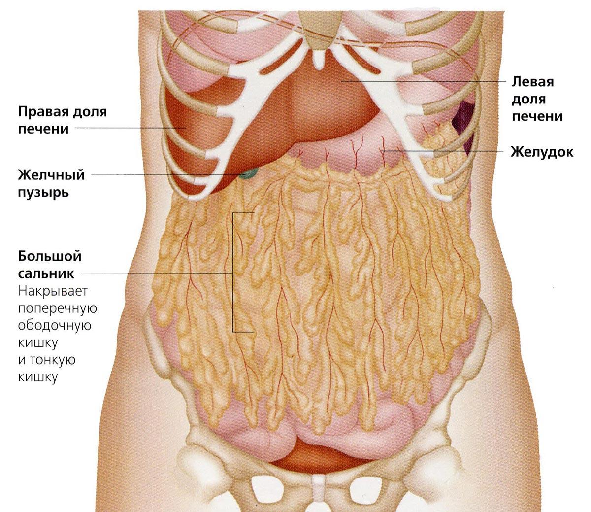 как избавиться от холестерина в сосудах