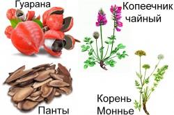 Состав средства Eroctive