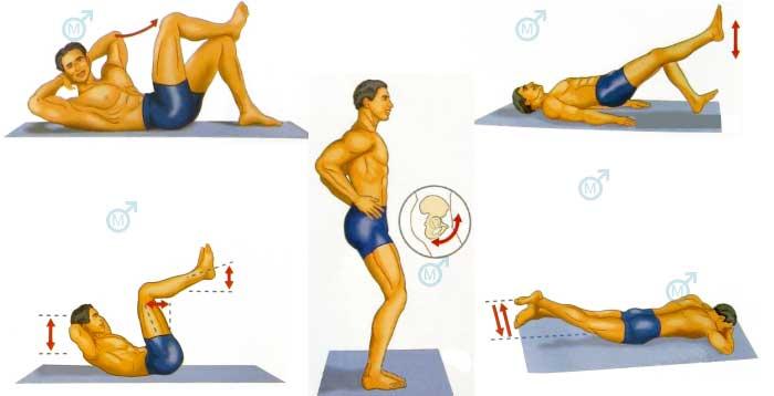 Физические упражнения повышающие потенцию